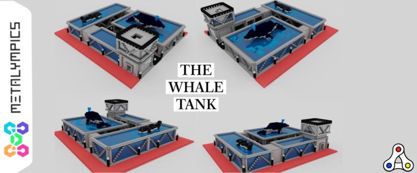 metalympics whaleshark the whale tank