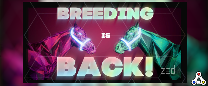 zed run breeding nft polygon